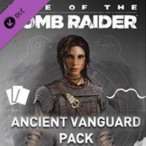 Rise of the Tomb Raider Ancient Vanguard
