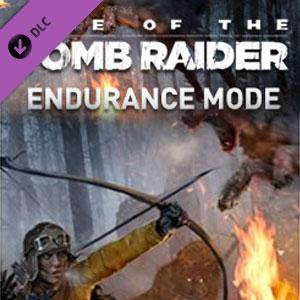 Rise of the Tomb Raider Endurance Mode