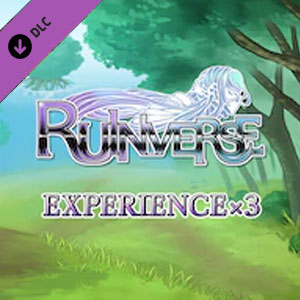 Ruinverse Experience x3