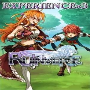 Ruinverse Experience x3