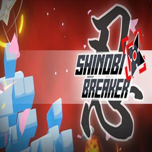 Shinobi Breaker VR
