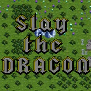 Buy Slay The Dragon CD Key Compare Prices
