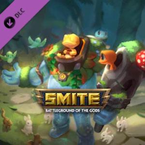 SMITE Gecko Guardian Bundle