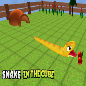 Snake In The Cube