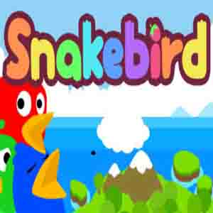 Buy Snakebird CD Key Compare Prices