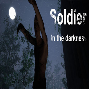 Soldier in the darkness
