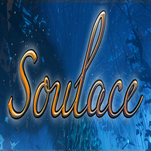 Soulace VR