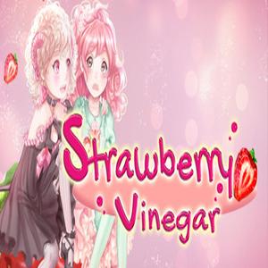 Buy Strawberry Vinegar CD Key Compare Prices