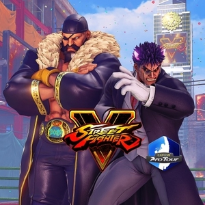 Buy Street Fighter 5 Capcom Pro Tour 2019 Premier Pass PS4 Compare Prices