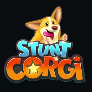 Buy Stunt Corgi VR CD Key Compare Prices