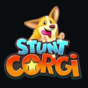 Buy Stunt Corgi VR CD Key Compare Prices