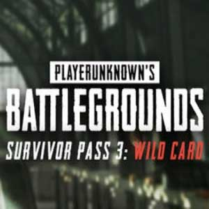 PUBG Survivor Pass 3 Wild Card