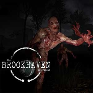 Buy The Brookhaven Experiment CD Key Compare Prices