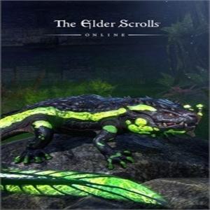 The Elder Scrolls Online Newcomer Pack