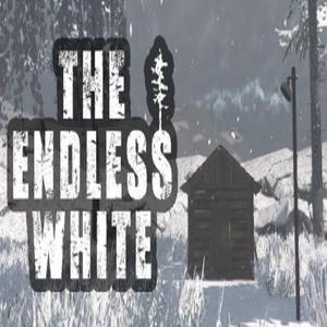 The Endless White