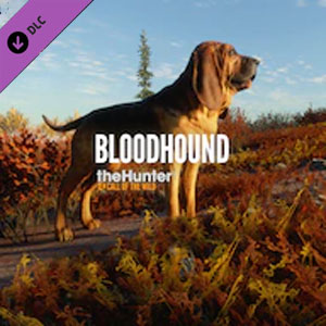 Buy theHunter Call of the Wild Bloodhound CD Key Compare Prices