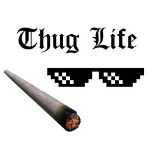 Buy Thug Life CD Key Compare Prices