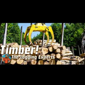 Timber The Logging Experts
