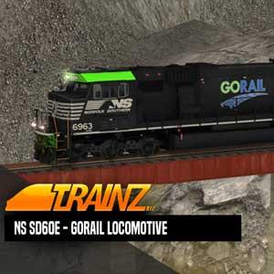 Trainz A New Era NS SD60E 6963 GoRail