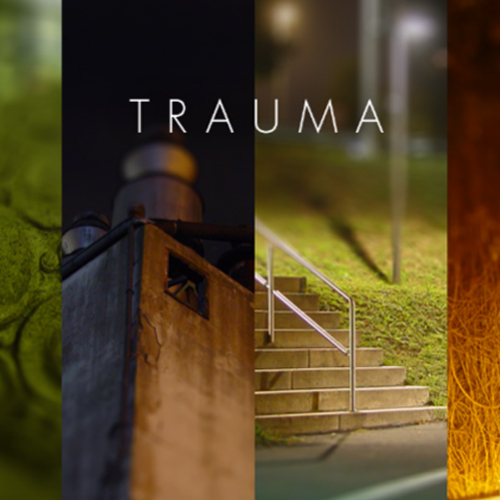 Buy Trauma CD Key Compare Prices