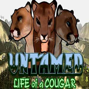 Untamed Life of a Cougar