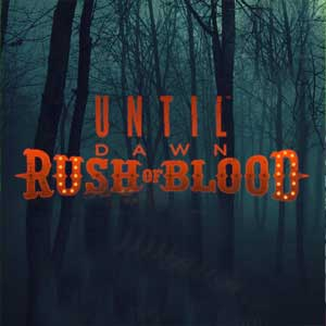 Buy Until Dawn Rush of Blood PS4 Game Code Compare Prices