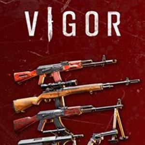 VIGOR ARMORY PACK