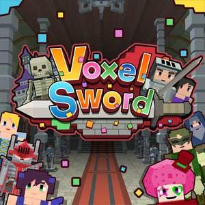 Voxel Sword