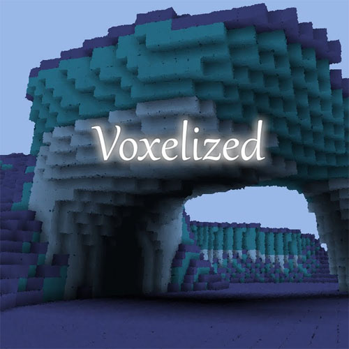 Voxelized