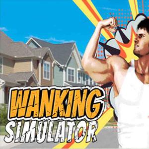 Wanking Simulator