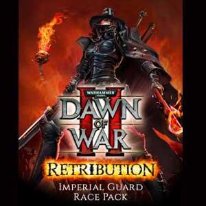 Warhammer 40K Dawn of War 2 Retribution Imperial Guard Race Pack