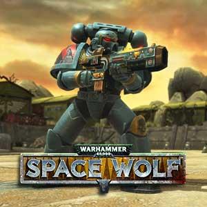 Warhammer 40K Space Wolf Sigurd Ironside