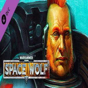 Warhammer 40k Wolf Drenn Redblade