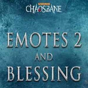 Warhammer Chaosbane Emotes 2 & Blessing