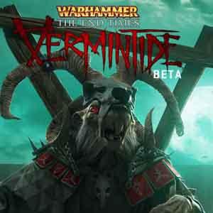 Warhammer End Times Vermintide Beta