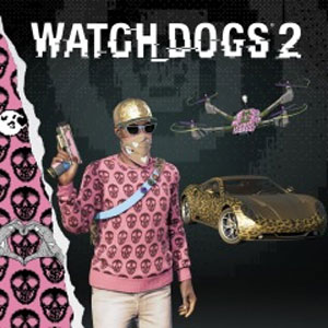 Buy Watch Dogs 2 Glam Pack PS4 Compare Prices