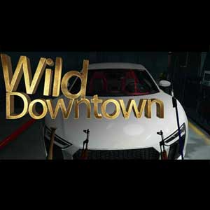 Buy Wild Downtown CD Key Compare Prices