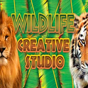 Buy Wildlife Creative Studio CD Key Compare Prices