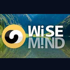 Buy Wisemind CD Key Compare Prices
