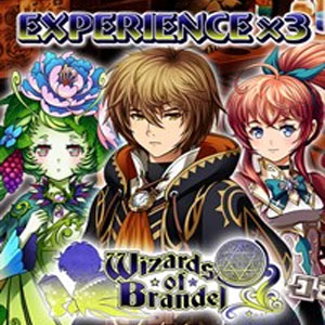 Wizards of Brandel Experience x3