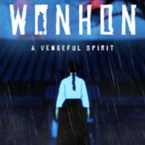 Wonhon A Vengeful Spirit