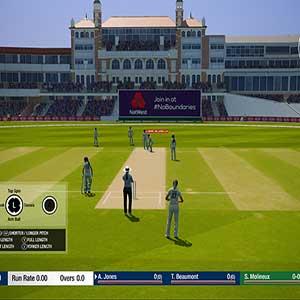 Cricket 19