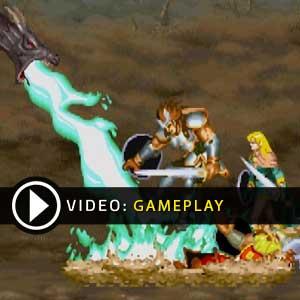 Dungeons & Dragons Chronicles of Mystara Gameplay Video