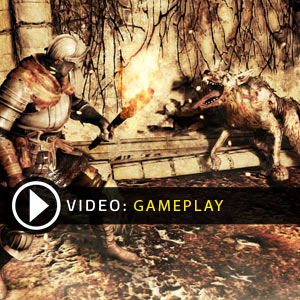 Dark Souls 2 Gameplay Video