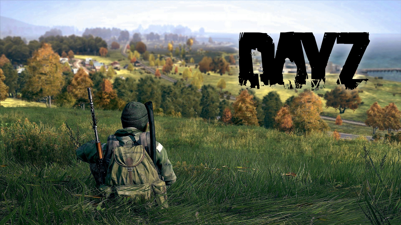 DayZ Launches