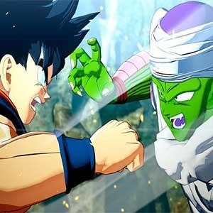 Goku & Piccolo