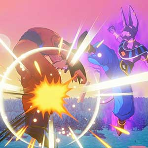 against Beerus