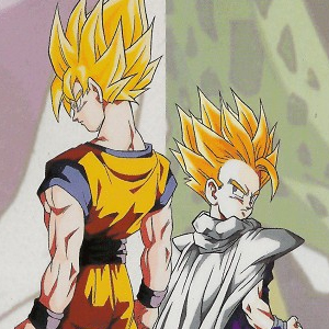 Dragon Ball Z The Call of Destiny