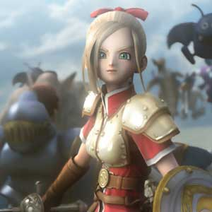 Dragon Quest Heroes Edition Character