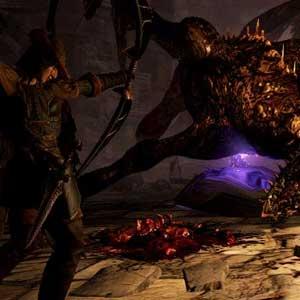 Dragons Dogma Dark Arisen Enemies